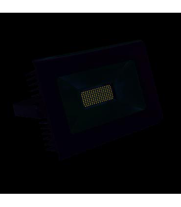 Naświetlacz LED ANTRA LED100W-NW GR