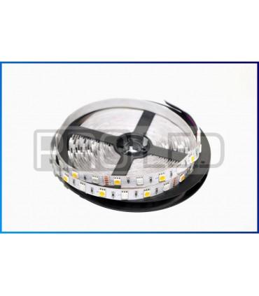 TAŚMA LED EPISTAR PREMIUM 5050 - 300 DIOD RGBWW STANDARD - ROLKA 5MB