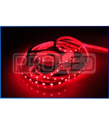 TAŚMA LED EPISTAR PREMIUM 5050 - 300 DIOD RGB STANDARD - ROLKA 5MB