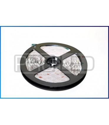TAŚMA LED EPISTAR PREMIUM 5050 - 300 DIOD RGBW STANDARD - ROLKA 5MB