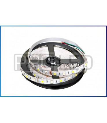 TAŚMA LED EPISTAR PREMIUM 5050 - 300 DIOD RGBW STANDARD - 1 MB