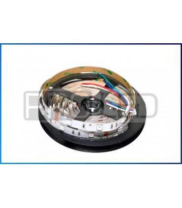 TAŚMA LED EPISTAR PREMIUM 5050 - 150 DIOD RGB NANO - 1MB
