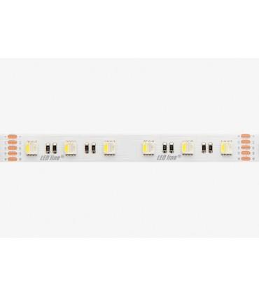 TAŚMA LED LINE 300 SMD5060 24V RGBW 6100-6800K