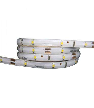 TAŚMA LED LINE 150 SMD3528 12V 3900-4175K IP65