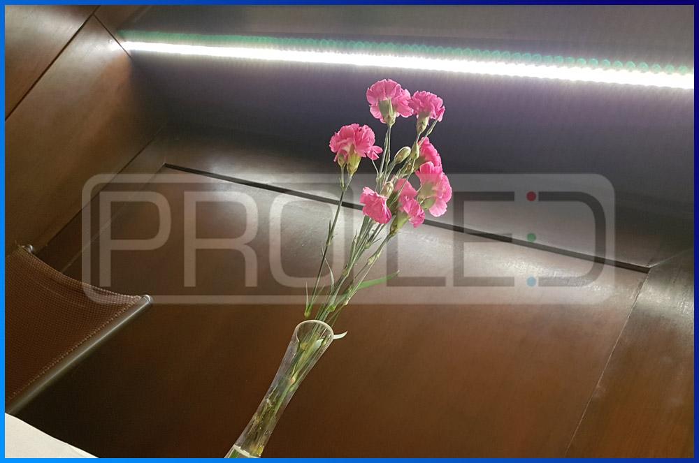 realizacja PRO-LED